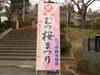 Nanohana_014